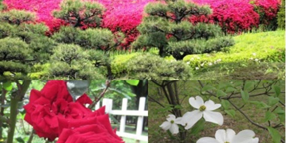 【中止】特別イベント《蔵人応援団「大人のピクニック」@花園と化す代々木公園》