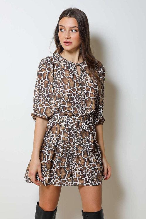Short Dress spot DC