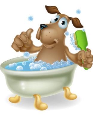 Dog-Bathing-in-Tub.jpg