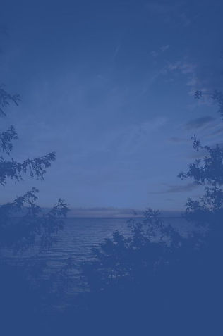 Horizon_foret_bleu.jpg