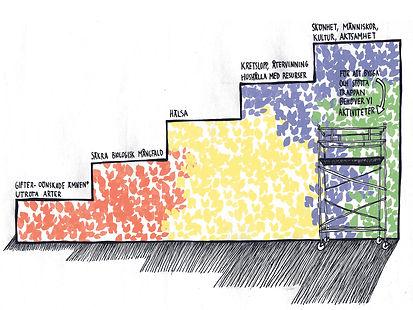 miljötrappa färg.jpg