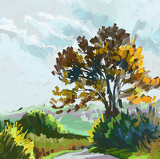 Country lane in the Autumn