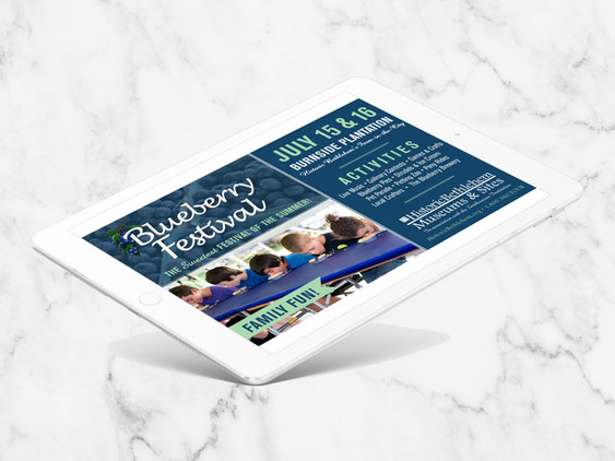 blueberry-ad copy.jpg