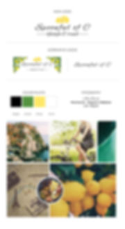 Branding website layouts8.jpg