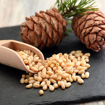 pine nuts v3.jpg