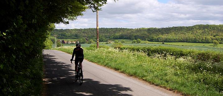 wild_cycles_road_2.jpg