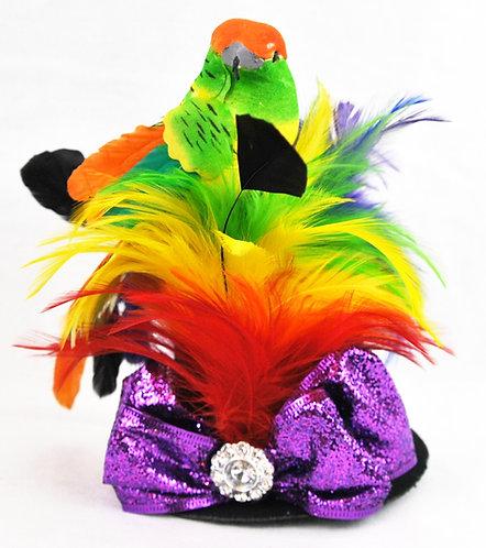 Rainbow Parrot Miniature Top Hat