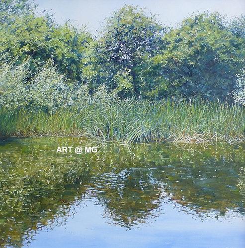 Summer Reeds by Michael Salt.