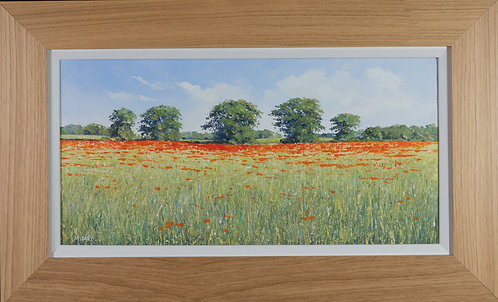 Poppy Field by Michael Salt