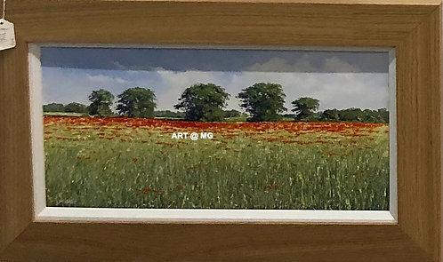 Poppy Field by Michael Salt.