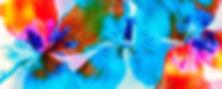 9ef1c2_8c2ba7d2545b48fe967d8a9c78d22746.