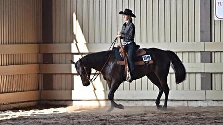 Programme d'apprentissage de l'équitation