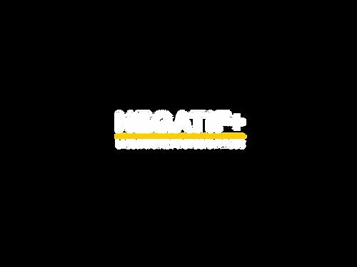 NEGATIF PLUS.png