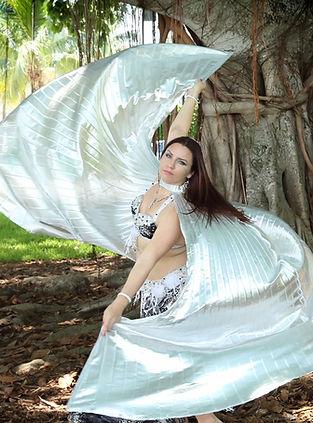 Palm Beach Belly Dancer