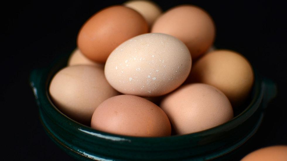 Eggs (Large)