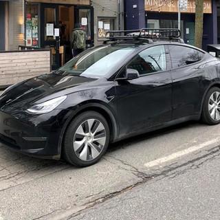 00020. Tesla Y - Rich OnPoint Tesla Y Ow