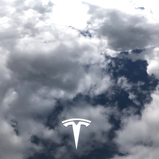 Tesla - By @samanthahorwill