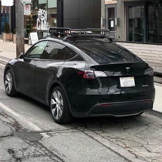 00021. Tesla Y - Rich OnPoint Tesla Y Ow