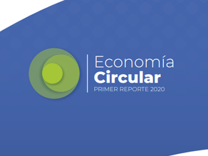DANE: Informe Economía Circular 2020
