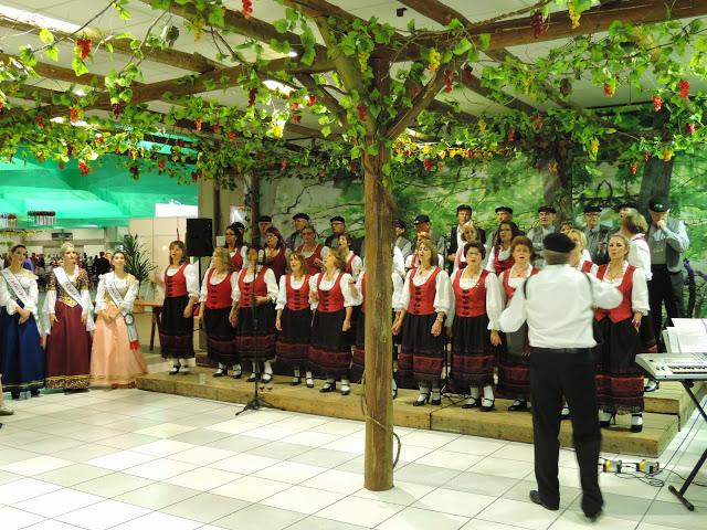 Festitalia 2014 Blumenau  (301)