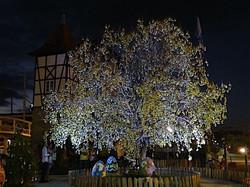 Árvore-de-Páscoa-na-Vila-de-Páscoa-Blumenau