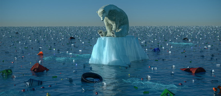Climate change (global warming)
