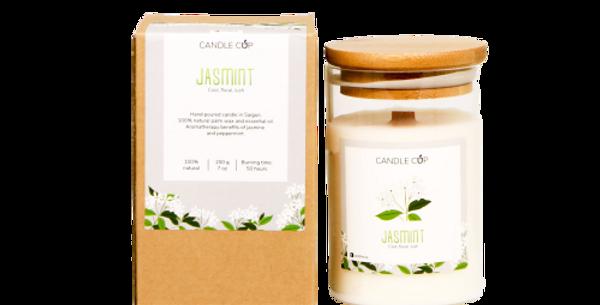 Nến Thơm Candle Cup - Mùi Jasmint