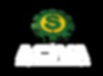 LogoACIVA_ok_bco.png
