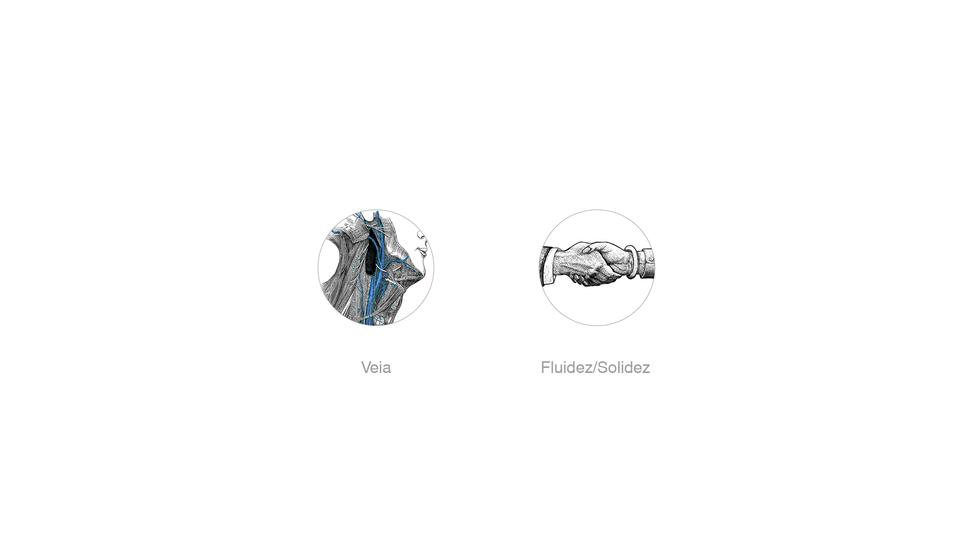 ref-portfolio-branding-criação-de-marc