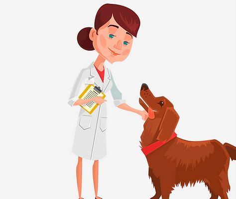 ilustração_parte_cachorro_e_mulher_veter