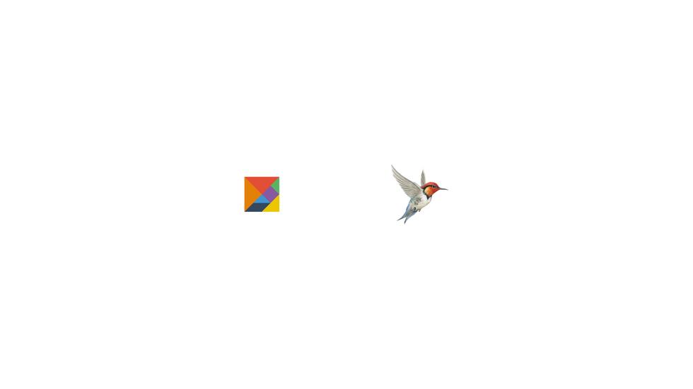 referencias_portfolio_branding_criação_d