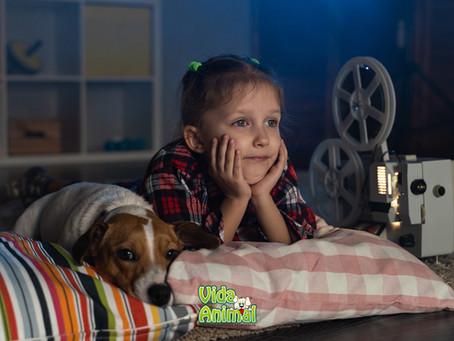 Pet&Pipoca. Filmes sobre pets para curtir nas férias!