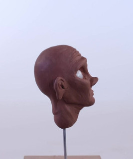 Evelyn Head Sculpt
