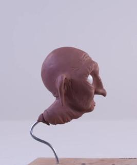 Frances Head Sculpt