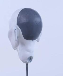 Plastic Head with Cap