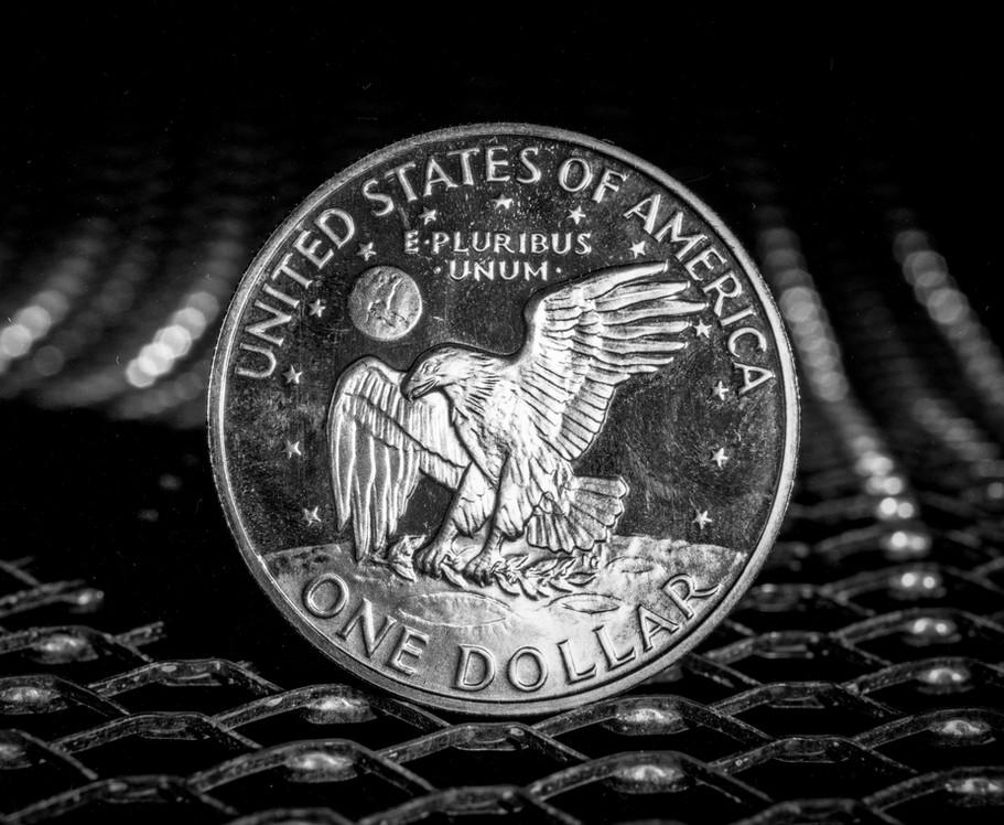 Moon Dollar001.jpg
