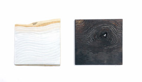 Stillness & This Place, oil on found wood & burnt and carved cherrywood, 42cm x 20cm, 2020