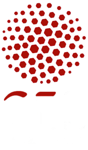 cel logo with white letters.png