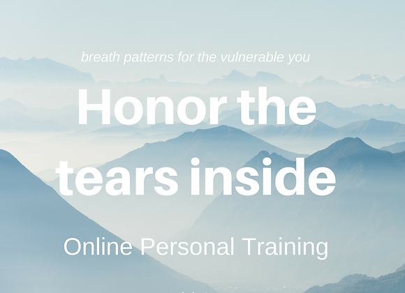 Personal Online Program for survivors of trauma, 6 x 55 min