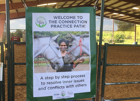 One hour mini workshop and showing of the Equine Product Kit