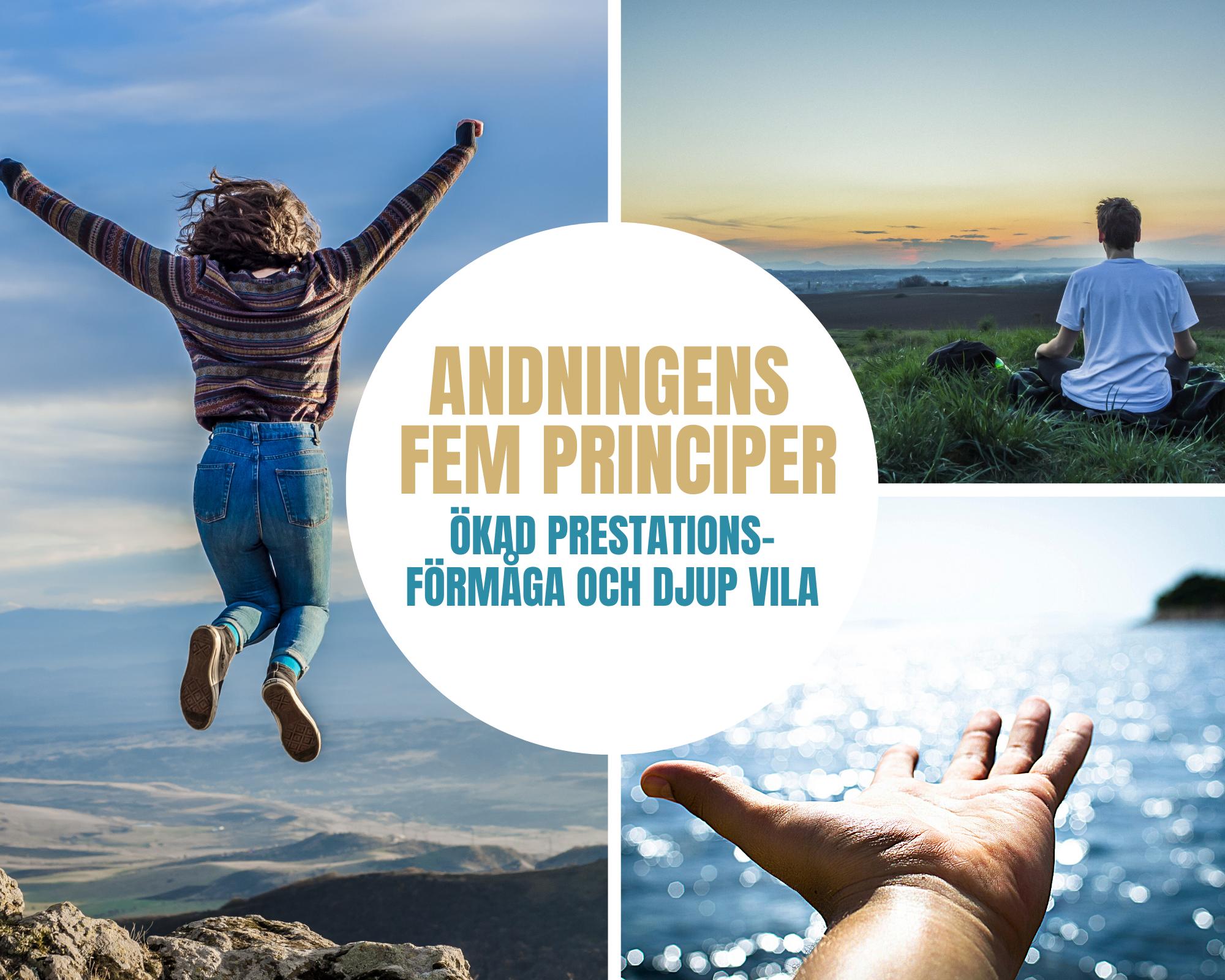 Andningens fem principer - Workshop!