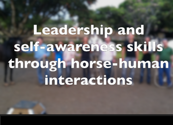 Exhale Equine for Leaders, full day/FEE COVERS up to 6 participants