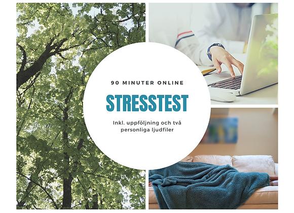 Stresstest inkl. personifierade ljudfiler, 90 minuter