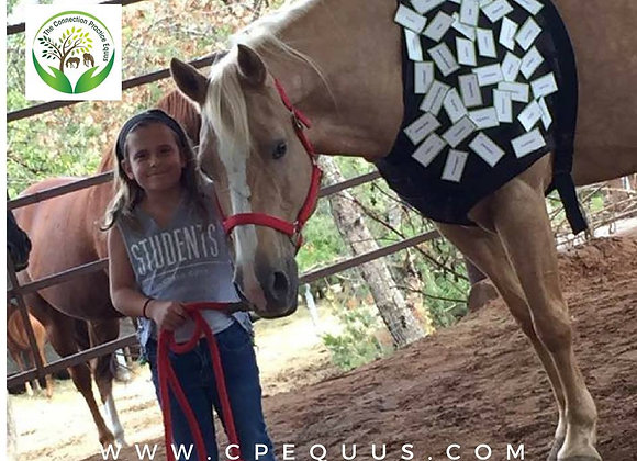 32 hours CP Equus Course