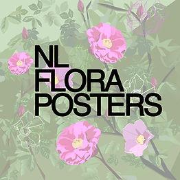 nlnlflorapicsqaue.jpg