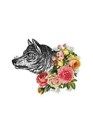 Flora & Fauna - Wolf