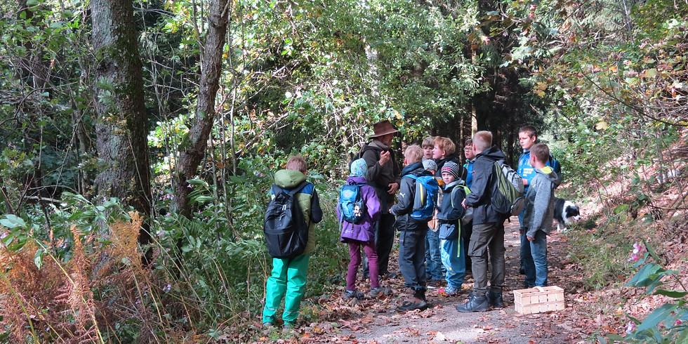 HerbstWaldCamp - Für 6- bis 12-jährige Kinder 2019