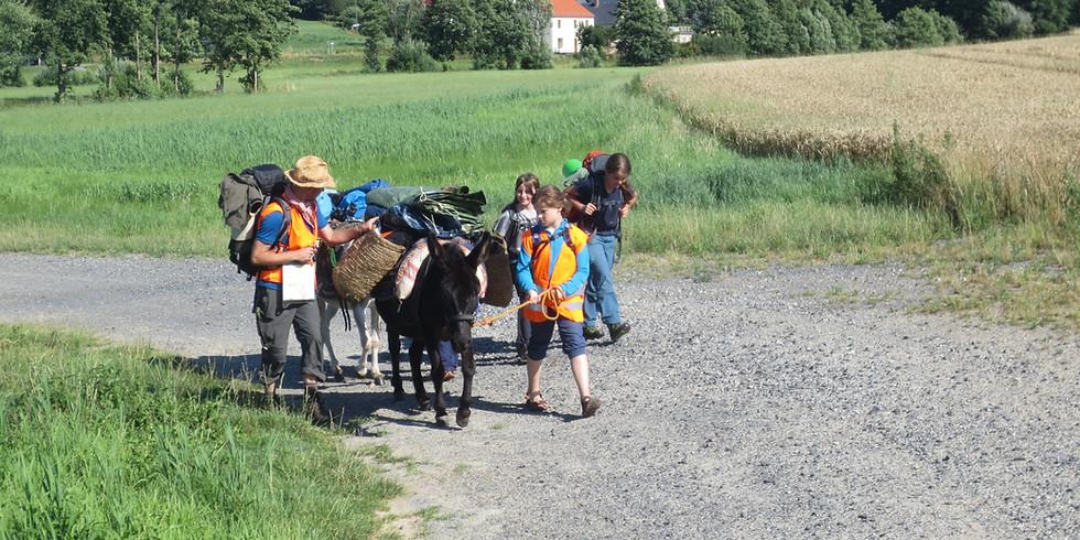 """Eselwanderung auf der """"Via Regia"""""""