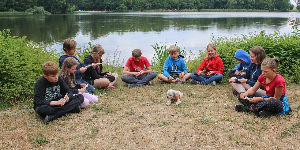 Wald- und AbenteuerCamp 2021 Frosch