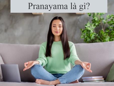 Hơi Thở trong Yoga - Pranayama là gì và lợi ích của Pranayama | Yoga và Thiền Trái Tim Vàng